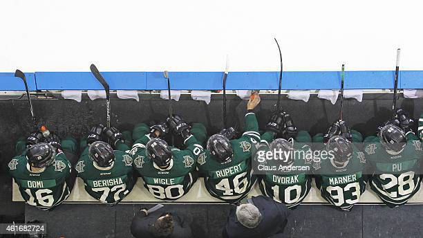 An overview of the London Knights bench against the Windsor Spitfires in an OHL game at Budweiser Gardens on January 16 2015 in London Ontario Canada...