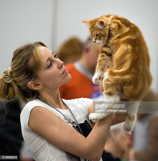 An owner holds her Maine Coon breed cat during the Catsburg 2016 International Cats show in Moscow on March 5 2016 / AFP / DMITRY SEREBRYAKOV