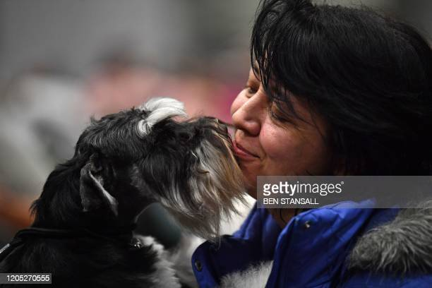 An owner kisses a Miniature Schnauzer on the first day of the Crufts dog show at the National Exhibition Centre in Birmingham, central England, on...