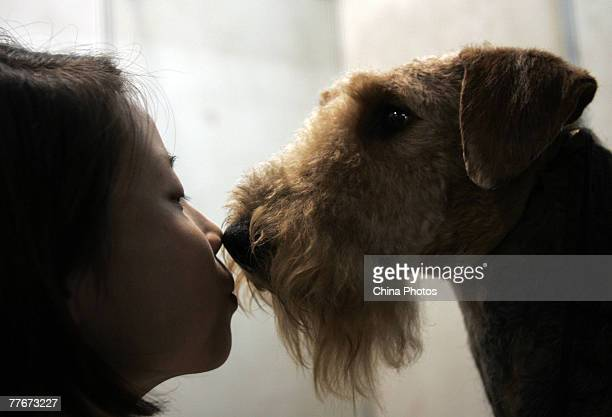 An owner kisses her dog during the 2007 Wuhan International Pet Expo on November 3 2007 in Wuhan of Hubei Province China Over 200 pet dogs will...