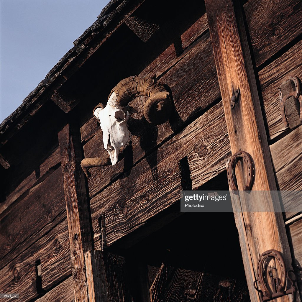 an ox skull hangs above a wooden doorway of a barn surrounded by horse shoes : Foto de stock