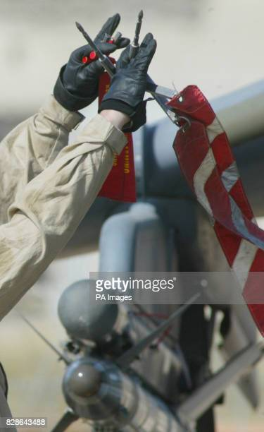 An RAF ground crewman known as a liney pulls the safety pin from a sidewinder missile on a British Harrier GR7 as final arming of the aircraft is...