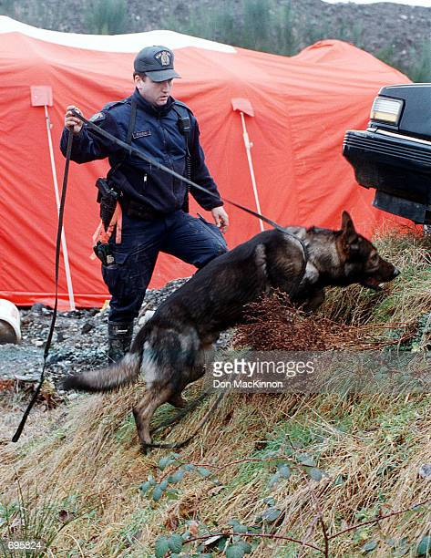 An Royal Canadian Mounted Police and his dog search for evidence relating to the disappearance of some of 50 missing women February 9 2002 at a pig...