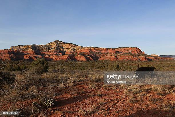An scenic view including livestock as photographed on February 62011 in Sedona Arizona