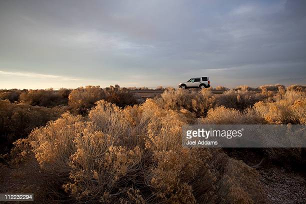 an suv rests amid sagebrush in utah's desert. - sagebrush stock pictures, royalty-free photos & images