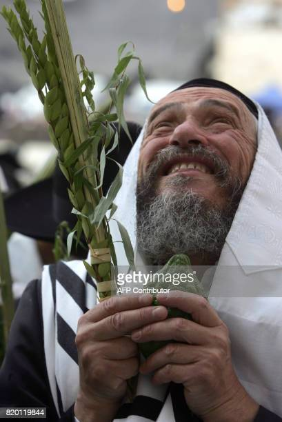An Ultra Orthodox Jewish man holds the four species Palm leave stalk Citrus Myrtle and Willowbranch as he pray during celebration of Sukkoth or feast...