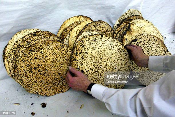 An UltraOrthodox Jew inspects freshly baked special unleavened bread called matzah April 8 2003 in a yeshiva in Jerusalem ahead of the weeklong...