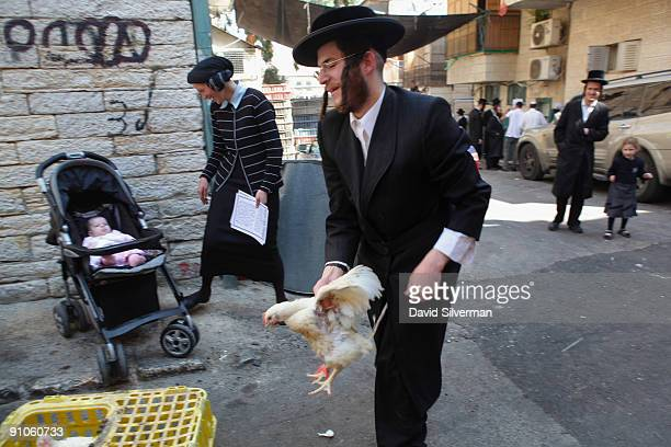 An ultraOrthodox Jew retrieves a chicken that escaped from as he was performing the 'kaparot'ceremony with his family on September 23 2009 in the Mea...
