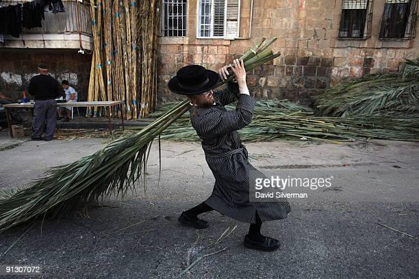 An ultra-Orthodox Jew struggles to carry home the palm branches he bought to cover his Sukkah which will be used during the upcoming Jewish festival...