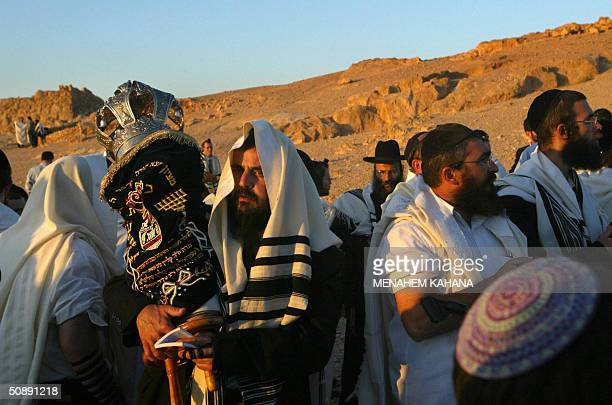 An UltraOrthodox Jew wearing a prayer shawl holds the Torah scrolls during the Morning prayer at sunrise on top of the ancient desert fortress of...