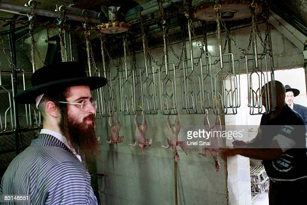 An UltraOrthodox Jewish man waits to receive his chickens at a slaughterhouse after he performed the kaparot ceremony October 062008 in the Mea...