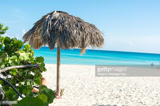 An umbrella made of dry palm fronds on a beach with blue and calm sea Palms are known to create a calm and comfortable atmosphere along with a...