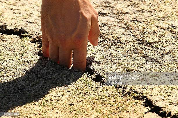 An umpire inspects cracks in the pitch before start of play during day five of the First Test match between Australia and South Africa at the WACA on...