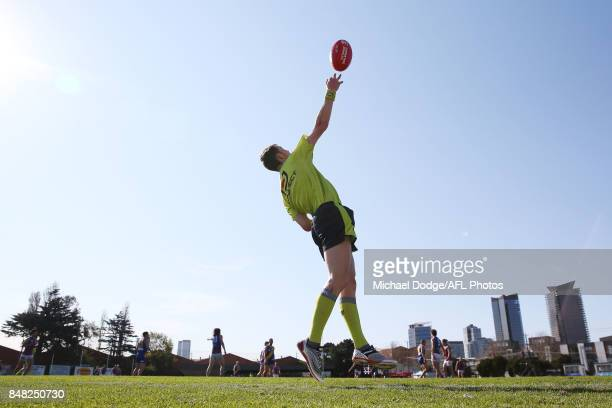 An umpire throws the ball back in during the VFL Preliminary Final match between Williamstown and Port Melbourne at Fortburn Stadium on September 17...