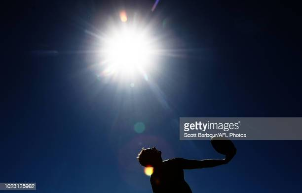 An umpire throws the ball into play during the round 23 AFL match between the Geelong Cats and the Gold Coast Suns at GMHBA Stadium on August 25 2018...