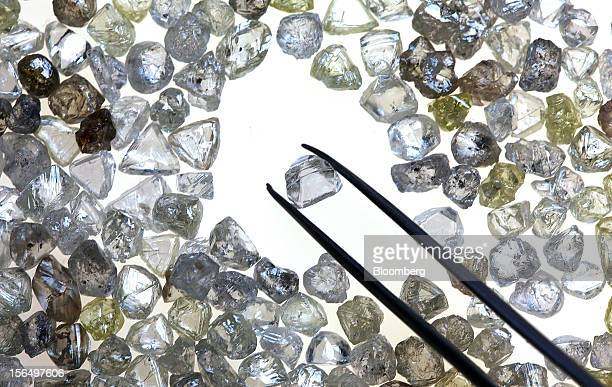 An uncut diamond is selected from a collection of colorless and colored diamonds on a sorting table at DTC Botswana a unit of De Beers in Gaborone...