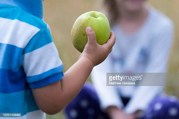 An unidentifiable child holds a green apple in his hand on August 9 2018 in Cardiff United Kingdom