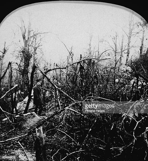 An unidentified American officer stands amid shattered trees in Belleau Wood scene of an important American victory over the Germans during World War...