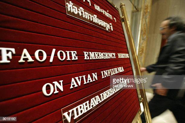 An unidentified delegate rushes to a conference hall to attend a FAO/OIE Emergency Regional Meeting on Avian Influenza Control in Animals in Asia...