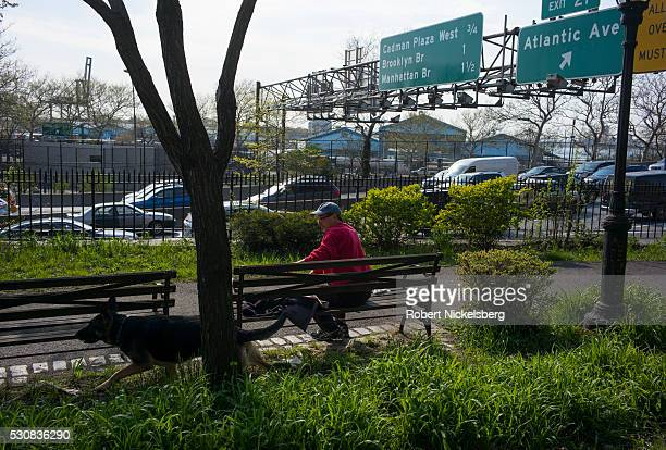 An unidentified man watches his German Shepherd dog as he sits on a bench in Van Voorhees Park in Brooklyn's Cobble Hill neighborhood, New York, New...