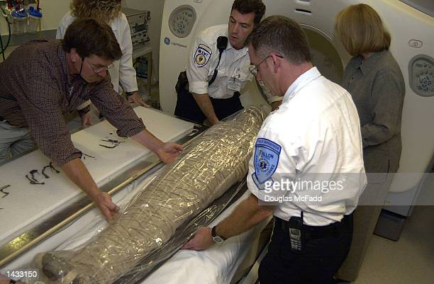 An unidentified mummy from the Museum of Science is prepared for a CT scan at the Beth Israel Deaconess Medical Center September 26 2002 in Boston...