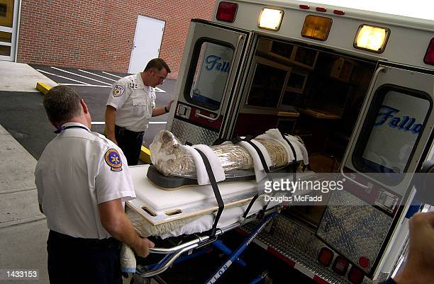 An unidentified mummy from the Museum of Science is unloaded from an ambulance at the Beth Israel Deaconess Medical Center September 26 2002 in...