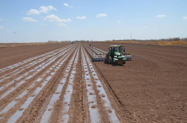 CHN: BeiDou Directed Seeders Work In Xinjiang's Cotton Fields