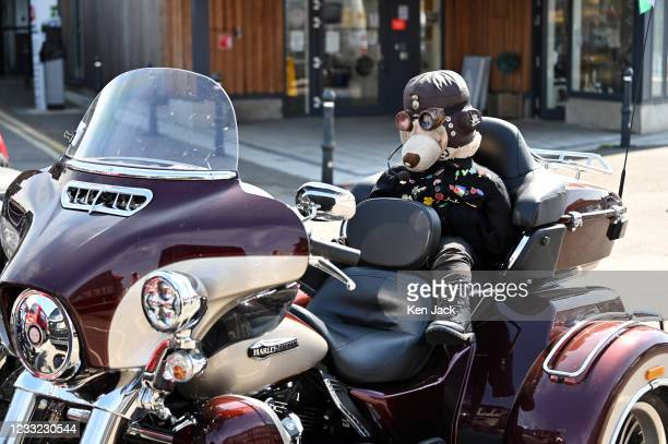 An unusual looking passenger sits in the pillion seat of a Harley-Davidson, on June 2, 2021 in Oban, Scotland.