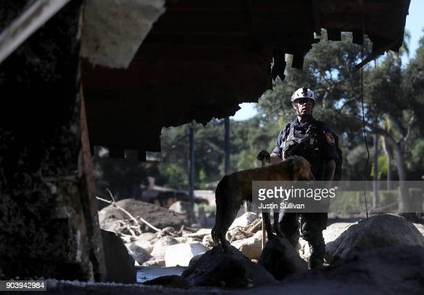 An urban search and rescue team member and his dog search a home that was destroyed by a mudslide on January 11 2018 in Montecito California 17...