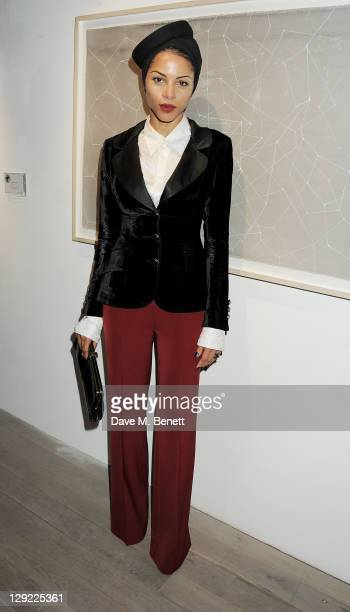 Ana Araujo attends 'Arts For Human Rights' the inaugural Bianca Jagger Human Rights Foundation Gala supported by Swarovski at Phillips de Pury And...