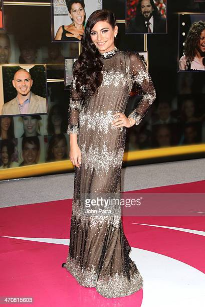 Ana Brenda Contreras attends Premio Lo Nuestro a la Musica Latina 2014 at American Airlines Arena on February 20 2014 in Miami Florida