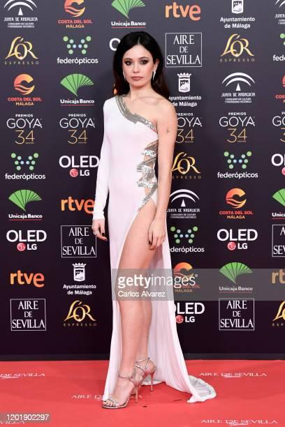 Ana Castillo attends the Goya Cinema Awards 2020 during the 34th edition of the Goya Cinema Awards at Jose Maria Martin Carpena Sports Palace on...