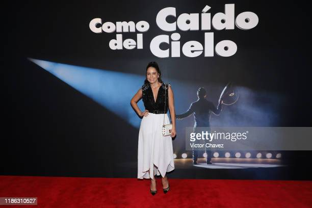 Ana Claudia Talancon attends the red carpet of Netflix film Como Caido del Cielo at Cinemex Antara Polanco on December 3 2019 in Mexico City Mexico