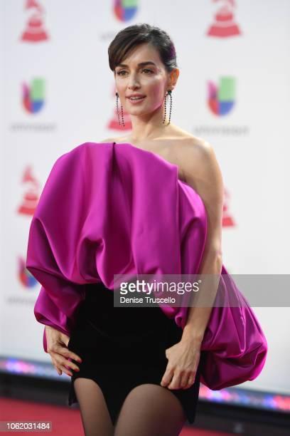 Ana de la Reguera attends the 19th annual Latin GRAMMY Awards at MGM Grand Garden Arena on November 15 2018 in Las Vegas Nevada