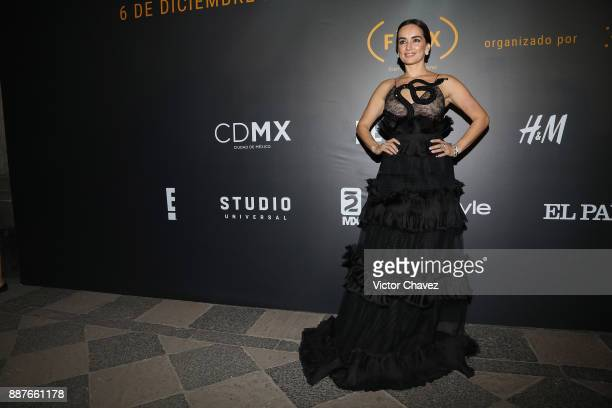 Ana de la Reguera attends the Premio Iberoamericano De Cine Fenix 2017 press room at Teatro de La Ciudad on December 6 2017 in Mexico City Mexico