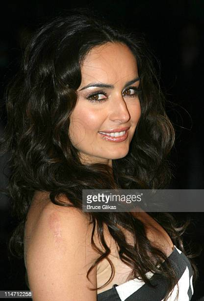 Ana De La Reguera during Paramount Pictures Hosts 2007 Golden Globe Award AfterParty at Beverly Hilton Hotel in Beverly Hills California United States