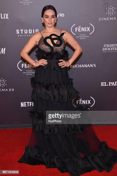 Ana de la Reguera is seen arriving at red carpet of Fenix Film Awards on December 06 2017 in México City Mexico