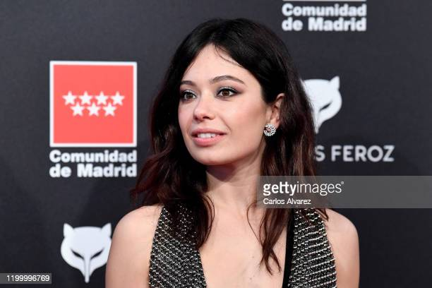 Ana del Castillo attends Feroz awards 2020 red carpet at Teatro Auditorio Ciudad de Alcobendas on January 16 2020 in Madrid Spain