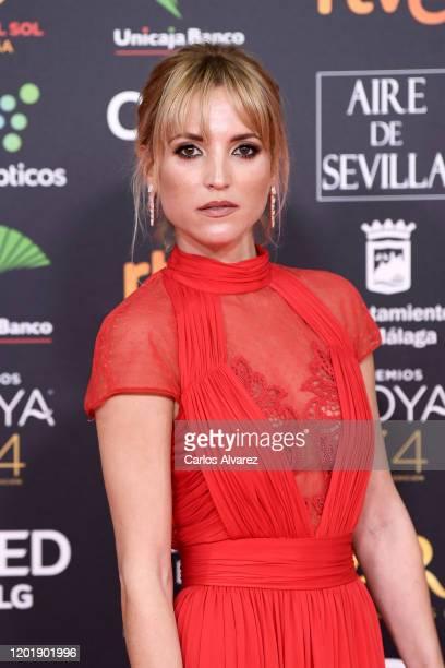Ana Fernandez attends the Goya Cinema Awards 2020 during the 34th edition of the Goya Cinema Awards at Jose Maria Martin Carpena Sports Palace on...