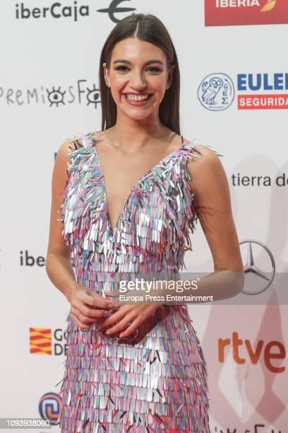 Ana Guerra attends the red carpet during 'Jose Maria Forque Awards' 2019 at Palacio de Congresos on January 12 2019 in Zaragoza Spain