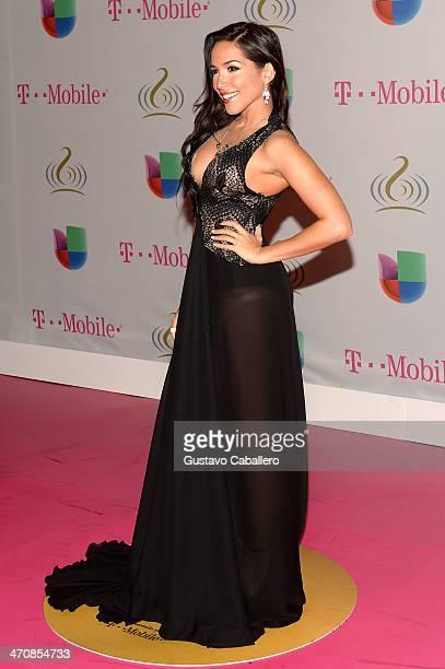 Ana Isabelle attends Premio Lo Nuestro a la Musica Latina 2014 at American Airlines Arena on February 20 2014 in Miami Florida