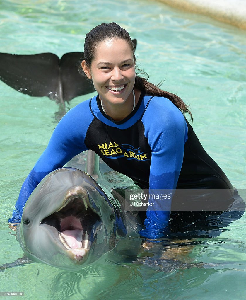 Tennis Players Swim With The Dolphins During Sony Open Tennis Week : ニュース写真