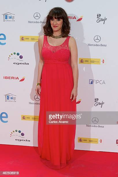 Ana Morgade attends the Jose Maria Forque awards 2013 at the Palacio Municipal de Congresos on January 13 2014 in Madrid Spain