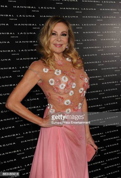 Ana Obregon attends the Hannibal Laguna 30th anniversary Gala Dinner at the Santo Mauro hotel on November 30 2017 in Madrid Spain