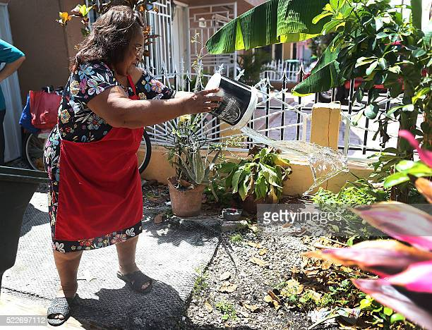 Ana Palacio dumps water from a bucket after a MiamiDade County mosquito control inspector showed her how standing water was where mosquitos where...