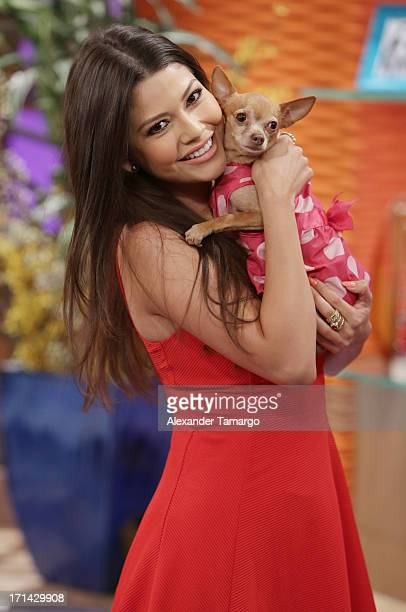 Ana Patricia Gonzalez appears on Univision's 'Despierta America' to promote film 'White House Down' at Univision Headquarters on June 24 2013 in...