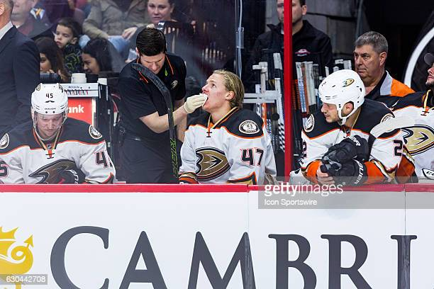 Anaheim Ducks Defenceman Hampus Lindholm receives attention on the bench after receiving a high stick during third period National Hockey League...