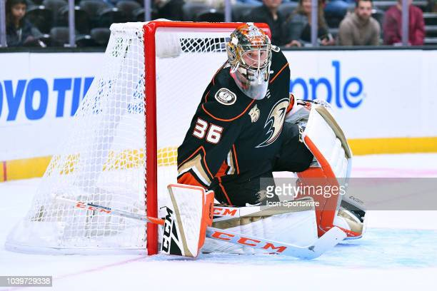 Anaheim Ducks goalie John Gibson in action during a NHL preseason game between the Arizona Coyotes and the Anaheim Ducks played on September 24 2018...