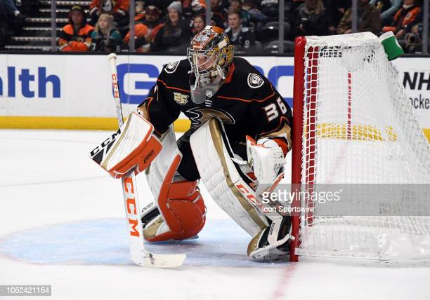 Anaheim Ducks goalie John Gibson in action during the second period of a game against the New York Islanders played on October 17 2018 at the Honda...
