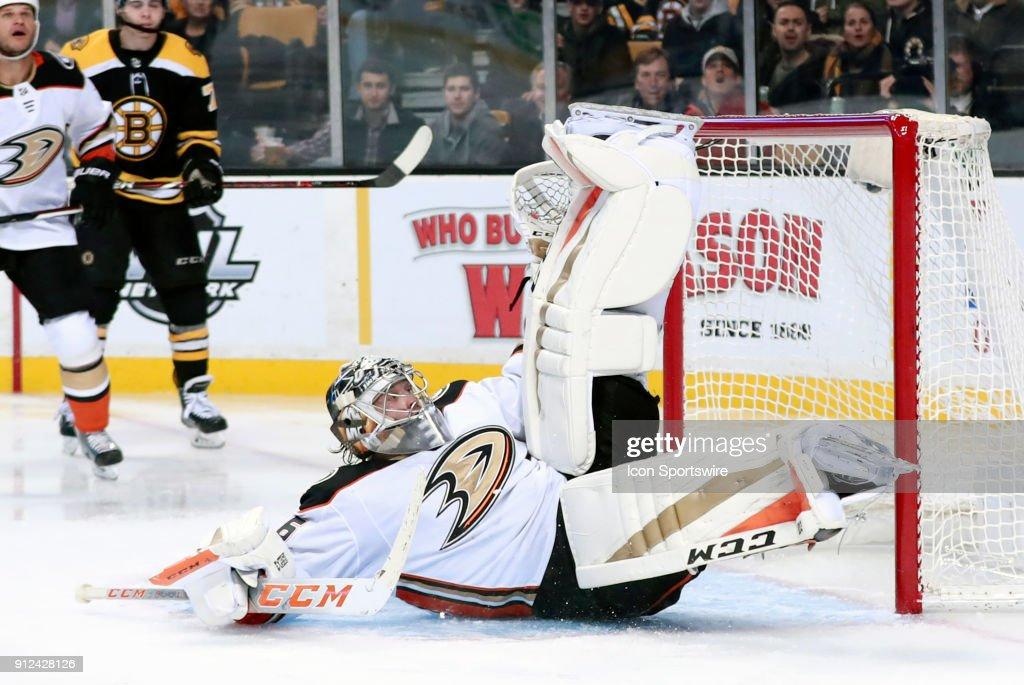 NHL: JAN 30 Ducks at Bruins : News Photo